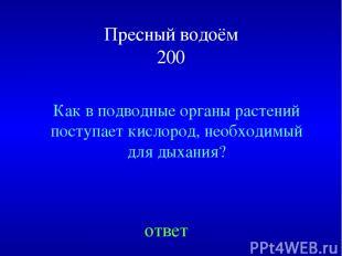 Пресный водоём 200 Как в подводные органы растений поступает кислород, необходим