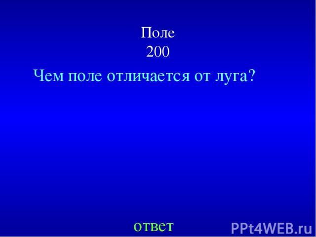 Поле 200 Чем поле отличается от луга? ответ