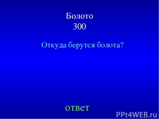Болото 300 Откуда берутся болота? ответ