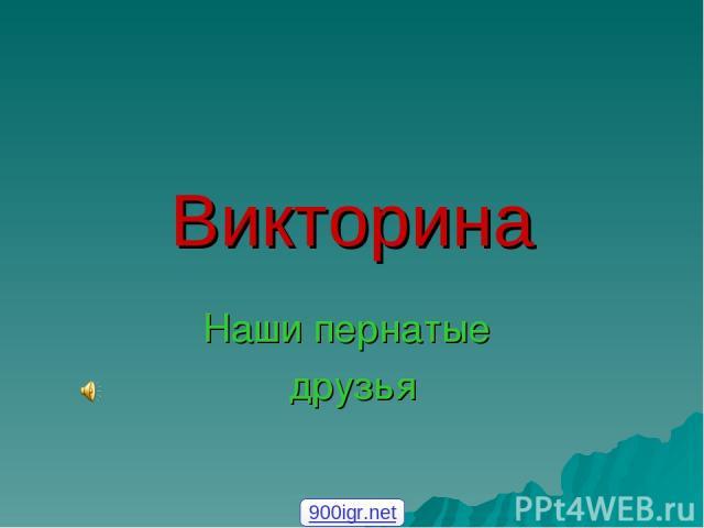 Викторина Наши пернатые друзья 900igr.net