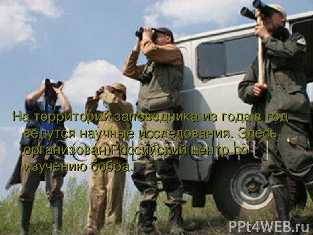 На территории заповедника из года в год ведутся научные исследования. Здесь организован Российский центр по изучению бобра.