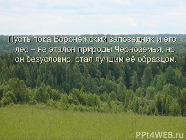 Пусть пока Воронежский заповедник и его лес – не эталон природы Черноземья, но он безусловно, стал лучшим её образцом.
