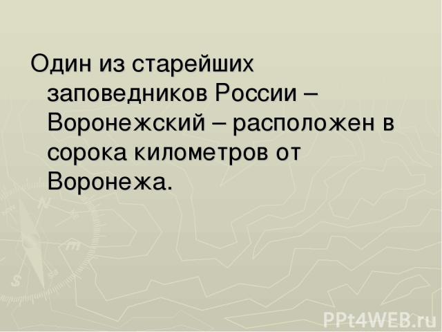 Один из старейших заповедников России – Воронежский – расположен в сорока километров от Воронежа.