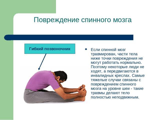 Повреждение спинного мозга Если спинной мозг травмирован, части тела ниже точки повреждения не могут работать нормально. Поэтому некоторые люди не ходят, а передвигаются в инвалидных креслах. Самые тяжелые случаи связаны с повреждением спинного мозг…