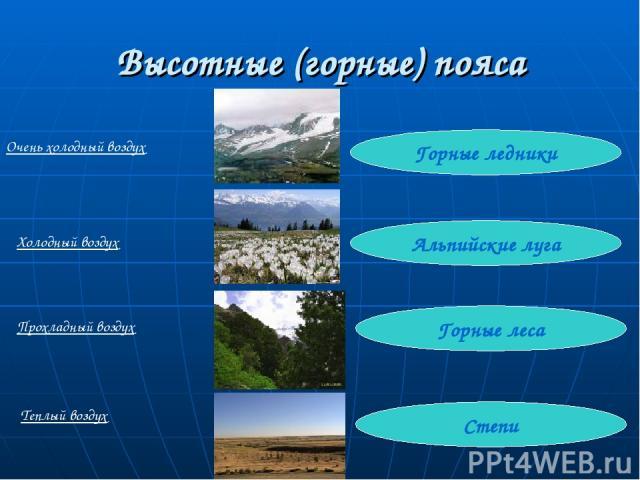 Высотные (горные) пояса Степи Горные леса Альпийские луга Горные ледники Очень холодный воздух Холодный воздух Прохладный воздух Теплый воздух