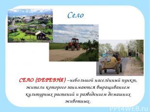 Село СЕЛО (ДЕРЕВНЯ) –небольшой населённый пункт, жители которого занимаются выра