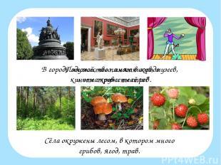 В городе множество памятников, музеев, кинотеатров и театров. Сёла окружены лесо