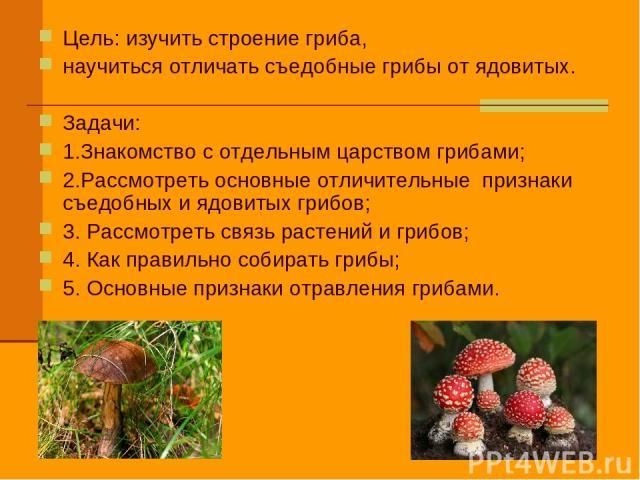Цель: изучить строение гриба, научиться отличать съедобные грибы от ядовитых. Задачи: 1.Знакомство с отдельным царством грибами; 2.Рассмотреть основные отличительные признаки съедобных и ядовитых грибов; 3. Рассмотреть связь растений и грибов; 4. Ка…