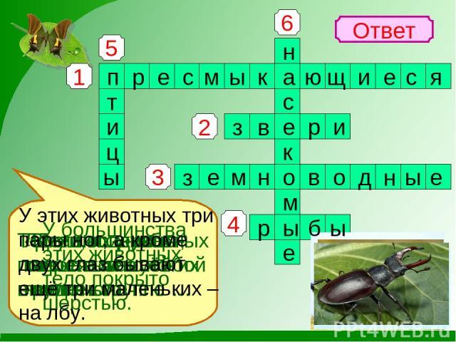 1 4 3 2 5 6 Ответ Змеи, ящерицы, черепахи отно- сятся к группе … У большинства этих животных тело покрыто шерстью. Лягушки и жабы относятся к особой группе - … Тело этих животных покрыто чешуёй в виде колечек. «Дети воздуха» - так называют этих живо…