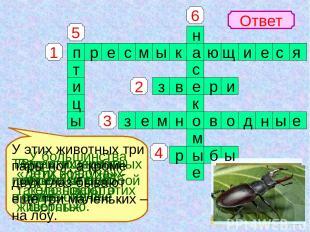 1 4 3 2 5 6 Ответ Змеи, ящерицы, черепахи отно- сятся к группе … У большинства э