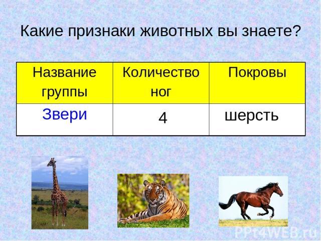 Какие признаки животных вы знаете? 4 шерсть Название группы Количество ног Покровы Звери
