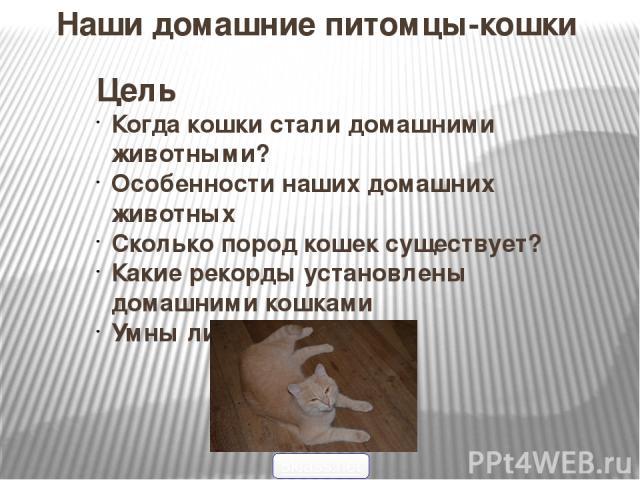Наши домашние питомцы-кошки Цель Когда кошки стали домашними животными? Особенности наших домашних животных Сколько пород кошек существует? Какие рекорды установлены домашними кошками Умны ли наши кошки? 5klass.net