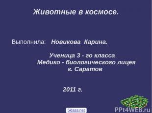 Животные в космосе. Выполнила: Новикова Карина. Ученица 3 - го класса Медико - б