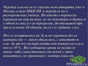 Черепах извлекли из спускаемого аппарата уже в Москве, в цеху ЦКБЭМ, и передали