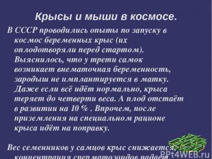 В СССР проводились опыты по запуску в космос беременных крыс (их оплодотворяли п