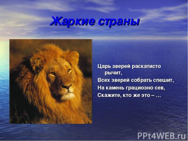 Жаркие страны Царь зверей раскатисто рычит, Всех зверей собрать спешит, На камень грациозно сев, Скажите, кто же это – …