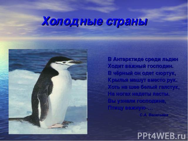 Холодные страны В Антарктиде среди льдин Ходит важный господин. В чёрный он одет сюртук, Крылья машут вместо рук. Хоть на шее белый галстук, На ногах надеты ласты. Вы узнали господина, Птицу важную-… С.А. Васильева