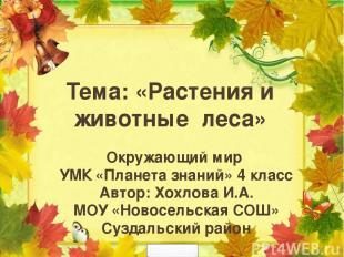 Окружающий мир УМК «Планета знаний» 4 класс Автор: Хохлова И.А. МОУ «Новосельска