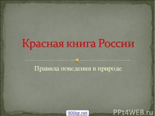 Правила поведения в природе 900igr.net