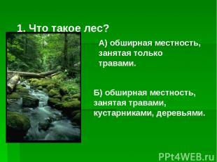 1. Что такое лес? Б) обширная местность, занятая травами, кустарниками, деревьям
