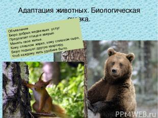 Адаптация животных. Биологическая сказка. Объявление Бюро добрых медвежьих услуг