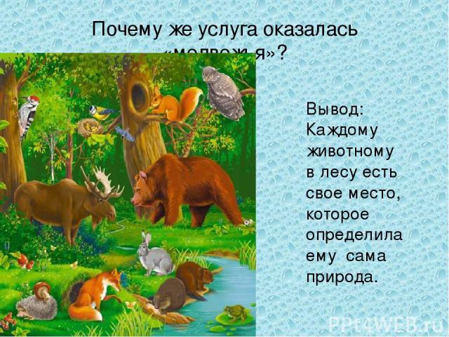 Почему же услуга оказалась «медвежья»? Вывод: Каждому животному в лесу есть свое место, которое определила ему сама природа.