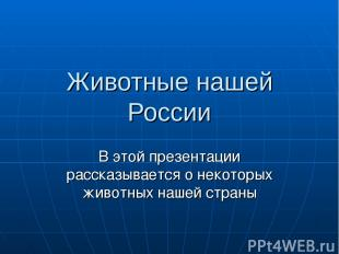 Животные нашей России В этой презентации рассказывается о некоторых животных наш