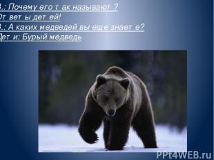 В.: Почему его так называют? Ответы детей! В.: А каких медведей вы еще знаете? Д