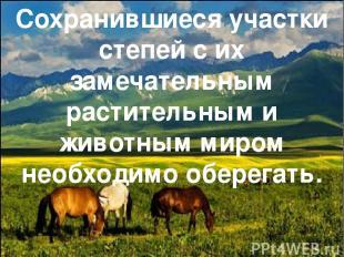 Сохранившиеся участки степей с их замечательным растительным и животным миром не