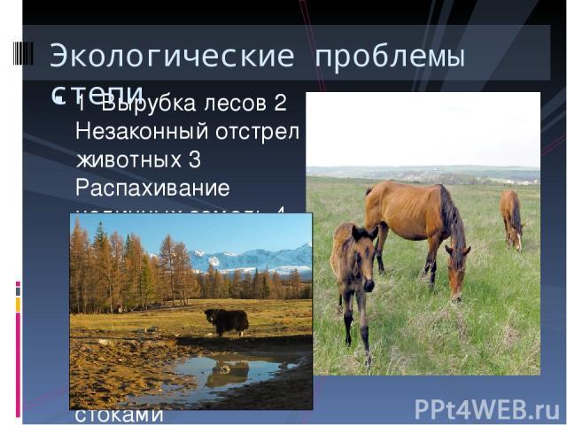1 Вырубка лесов 2 Незаконный отстрел животных 3 Распахивание целинных земель 4 Вытаптывание травы скотом 5 Пожары 6 Загрязнение почв отходами 7 Загрязнение рек стоками Экологические проблемы степи
