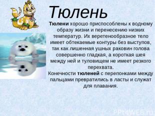 Тюлень Тюленихорошо приспособлены к водному образу жизни и перенесению низких т