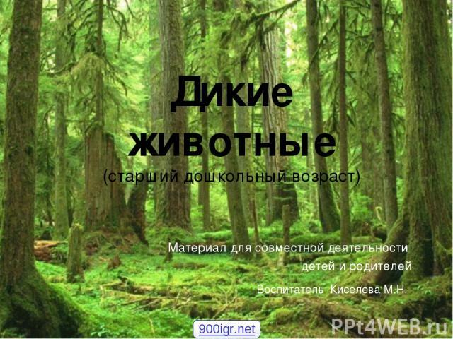 Материал для совместной деятельности детей и родителей Дикие животные (старший дошкольный возраст) Воспитатель Киселева М.Н. 900igr.net