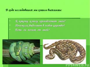 В ходе исследования мы хотим выяснить: К какому классу принадлежат змеи? Почему