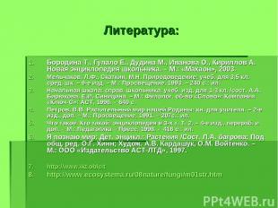 Литература: Бородина Т., Гупало Е., Дудина М., Иванова О., Кириллов А. Новая энц