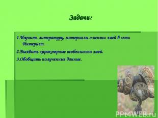 Задачи: 1.Изучить литературу, материалы о жизни змей в сети Интернет. 2.Выявить