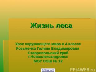Жизнь леса Урок окружающего мира в 4 классе Козьменко Галина Владимировна Ставро