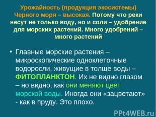 Урожайность (продукция экосистемы) Черного моря – высокая. Потому что реки несут