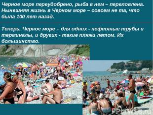 Черное море переудобрено, рыба в нем – переловлена. Нынешняя жизнь в Черном море