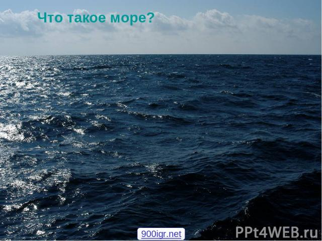 Что такое море? 900igr.net