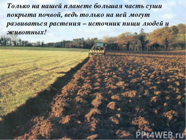Только на нашей планете большая часть суши покрыта почвой, ведь только на ней могут развиваться растения – источник пищи людей и животных!
