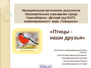 Муниципальное автономное дошкольное образовательное учреждение города Новосибирс
