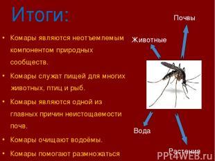 Итоги: Комары являются неотъемлемым компонентом природных сообществ. Комары служ