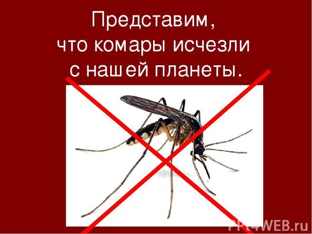 Представим, что комары исчезли с нашей планеты.