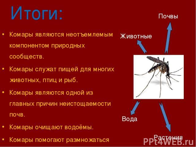 Итоги: Комары являются неотъемлемым компонентом природных сообществ. Комары служат пищей для многих животных, птиц и рыб. Комары являются одной из главных причин неистощаемости почв. Комары очищают водоёмы. Комары помогают размножаться растениям. Жи…