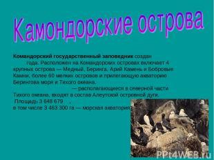 Командорский государственный заповедник создан 23 апреля 1993 года. Расположен н