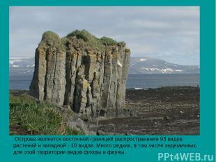 Острова являются восточной границей распространения 93 видов растений и западной