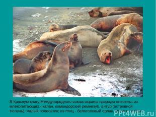 В Красную книгу Международного союза охраны природы внесены: из млекопитающих -