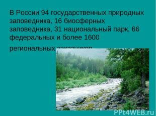 В России 94 государственных природных заповедника, 16 биосферных заповедника, 31