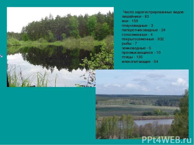 Число зарегистрированных видов: лишайники - 83 мхи - 159 плауновидные - 3 папоротниковидные - 24 голосеменные - 4 покрытосеменные - 932 рыбы - 7 земноводные - 5 пресмыкающиеся - 10 птицы - 135 млекопитающие - 54