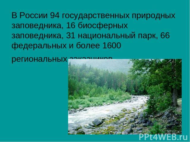 В России 94 государственных природных заповедника, 16 биосферных заповедника, 31 национальный парк, 66 федеральных и более 1600 региональных заказников.